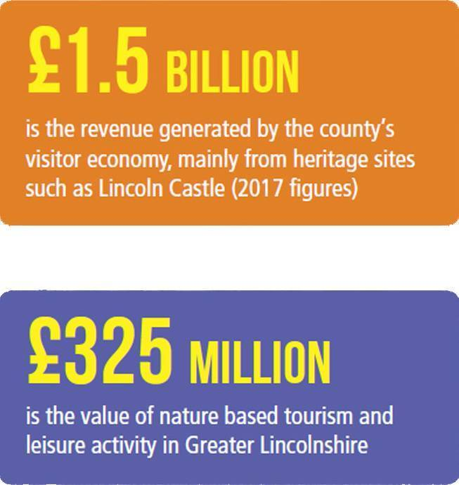 Graphic illustrating some of the key figures in relation to tourism in Lincolnshire